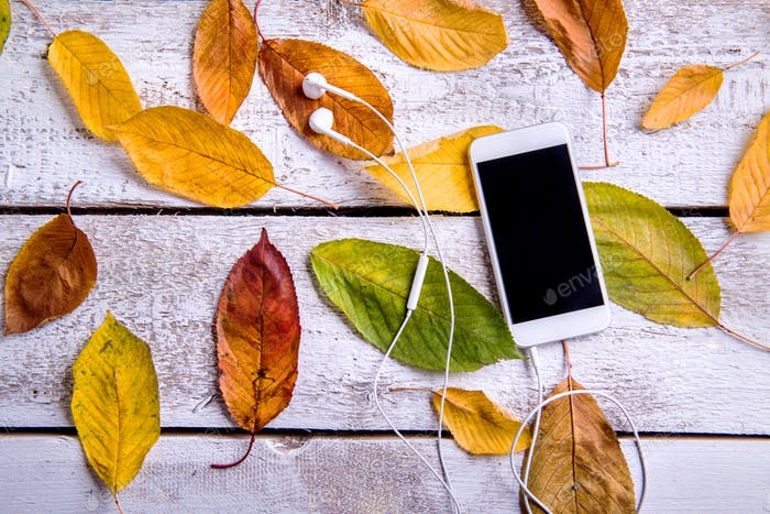 Smart phone, earphones and autumn leaves. White wooden backgroun