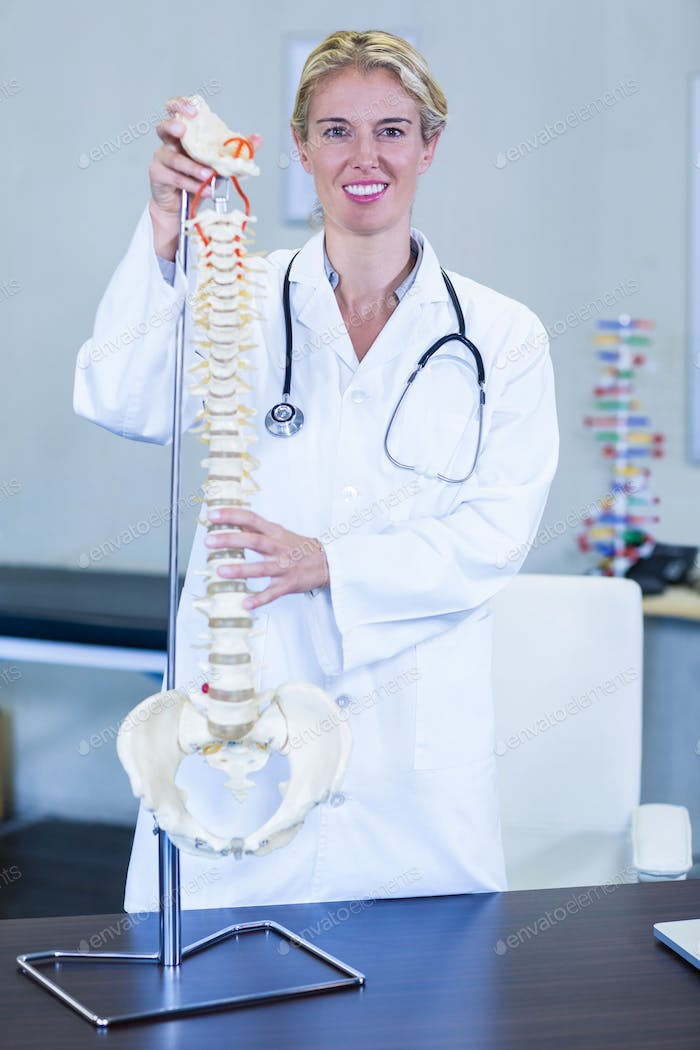 Physiotherapist holding a spine model