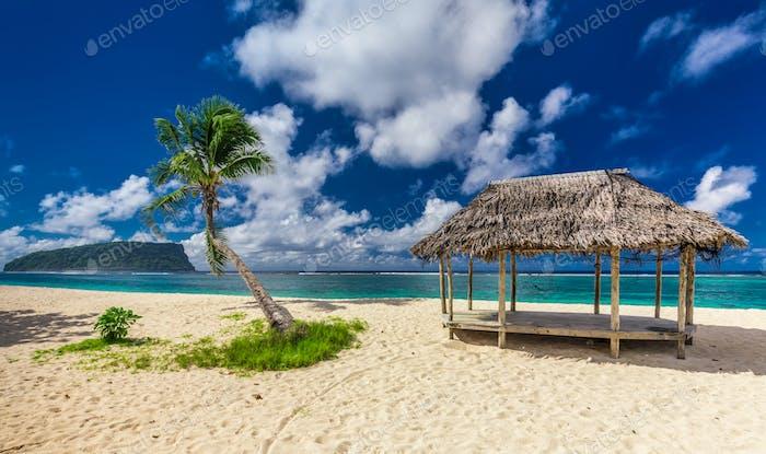 Tropical vibrant beach on Samoa Island with palm tree and fale