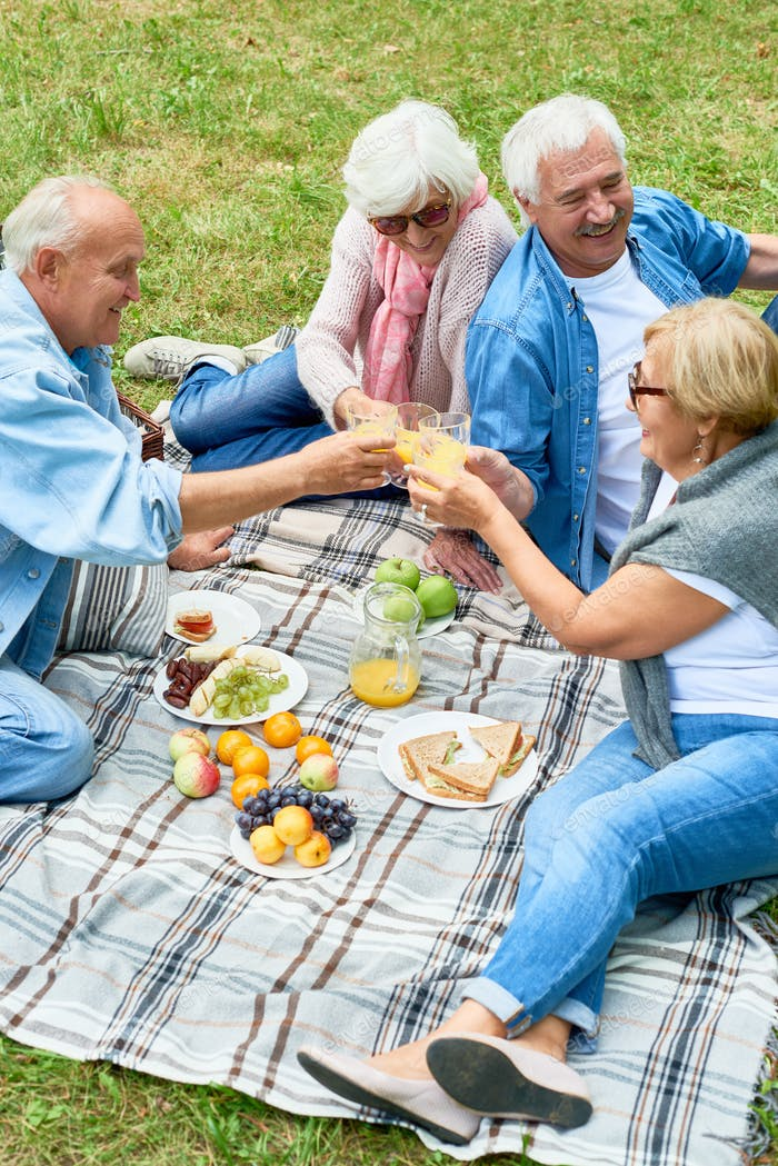 Happy Seniors Enjoying Picnic in Park