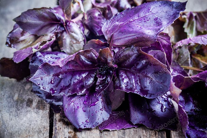 haz de albahaca púrpura en el primer plano de la mesa rústica