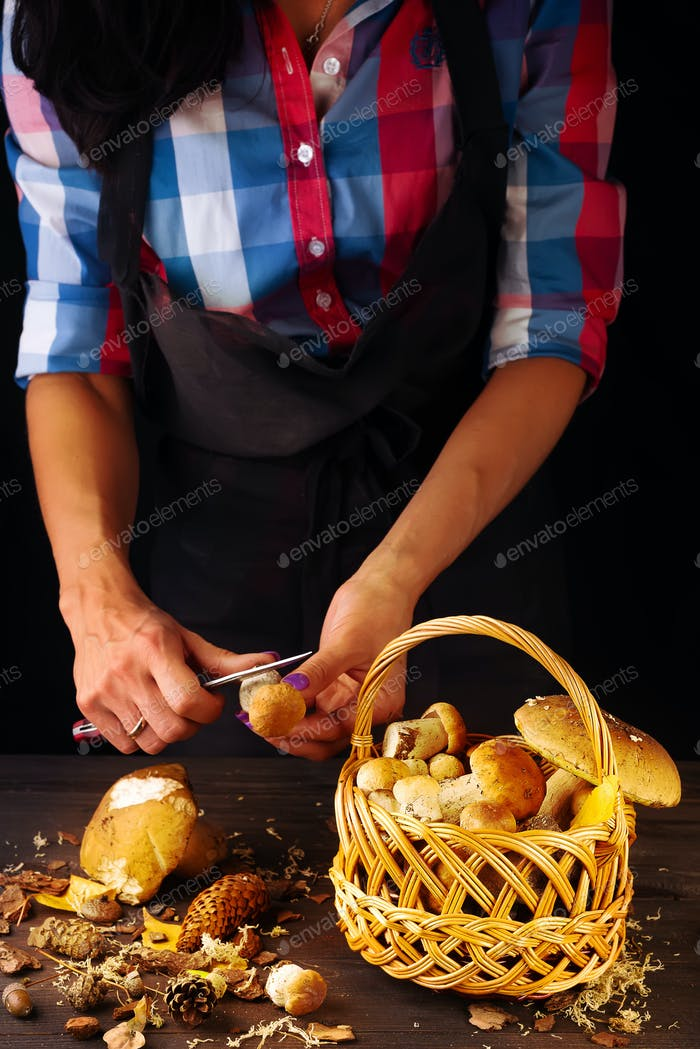 Fresh forest mushrooms in a basket on a dark wooden table. Woman's hands cut a mushroom