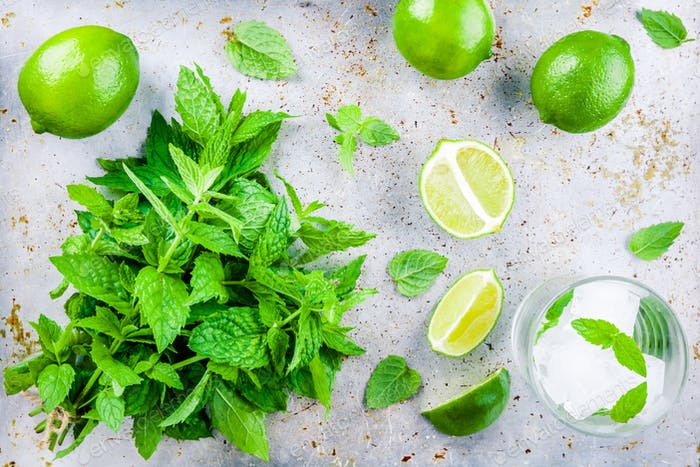 mint, lime, ice, sugar for mojito cocktail