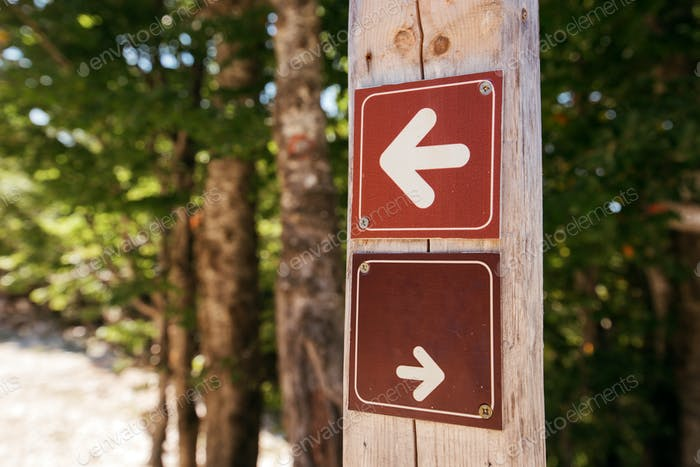 Forest hiking trail direction arrow signs