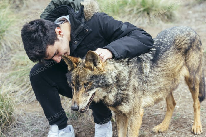 Young handsome man stroking wolf