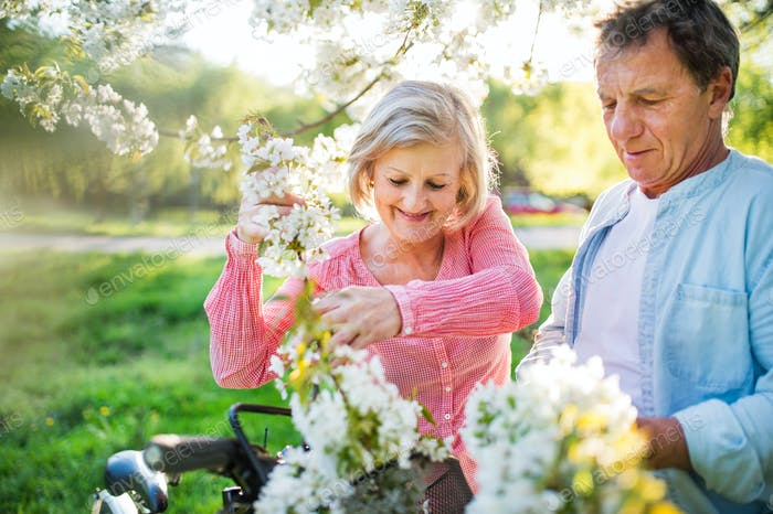 Thumbnail for Beautiful senior couple with bicycles outside in spring nature.