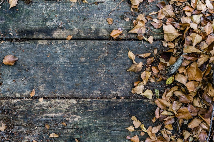 Background with old wooden table and yellow autumnal leaves
