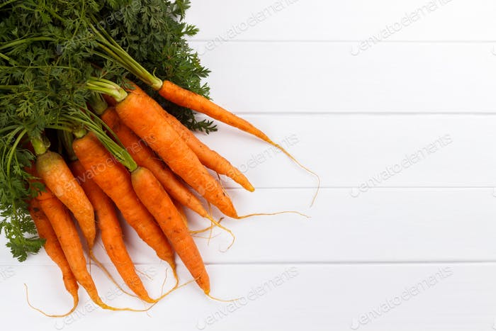 bunch of freshly harvested carrots