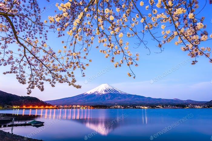 Mt. Fuji Spring