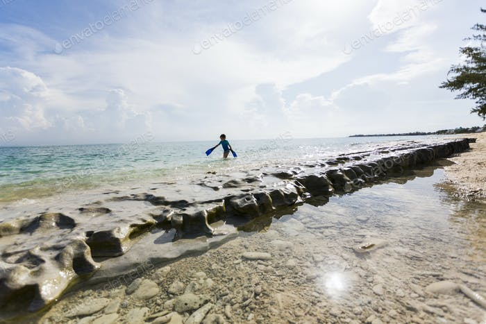 5 year old boy walking on rock formation with fins, Grand Cayman Island