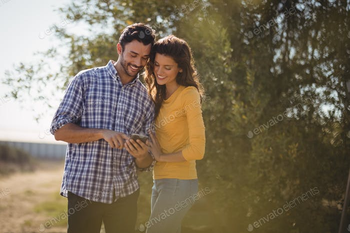 Smiling young couple using mobile phone at olive farm