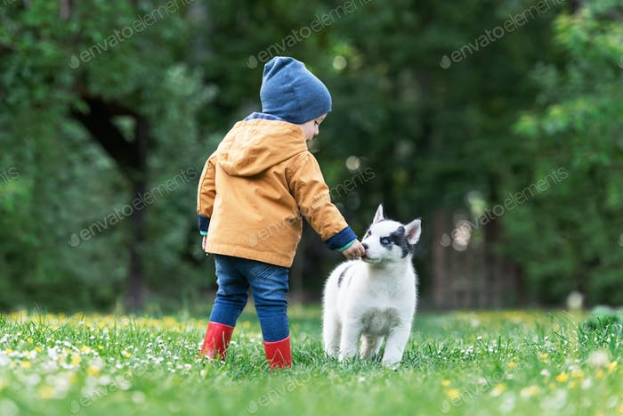 Small kid in yellow jacket with white dog puppy