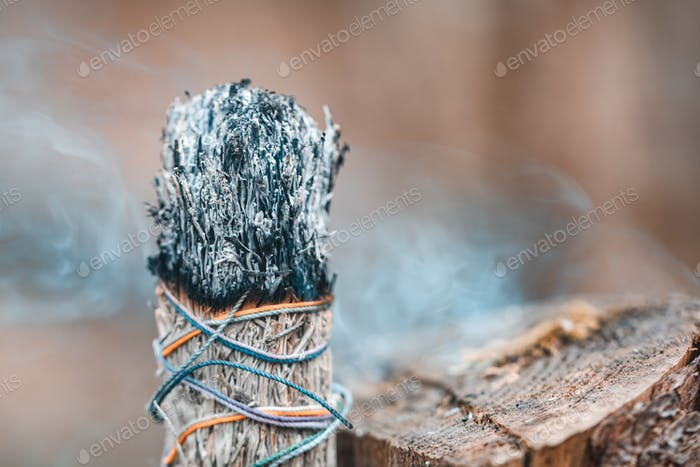 Burning white sagebrush incense in a forest