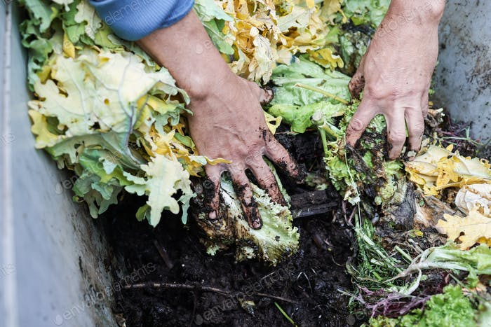 Farmer man holding compost with worms - Main focus on left hand