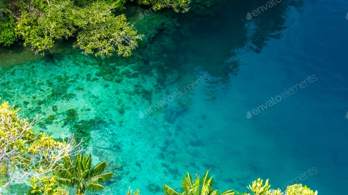 Clear Blue Water and Coral in Mangrove near Warikaf Homestay, Kabui Bay, Passage. Gam Island, West