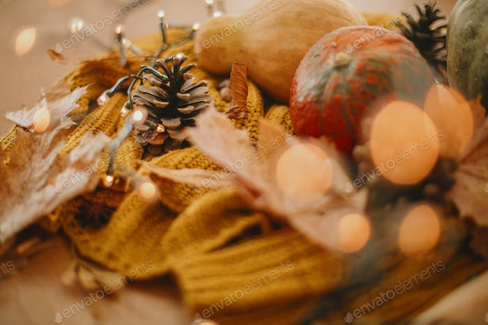 Autumn hygge. Cozy moody image of pumpkin, autumn leaves