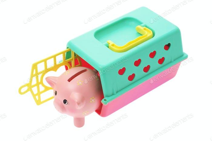 Piggybank in Plastic Box