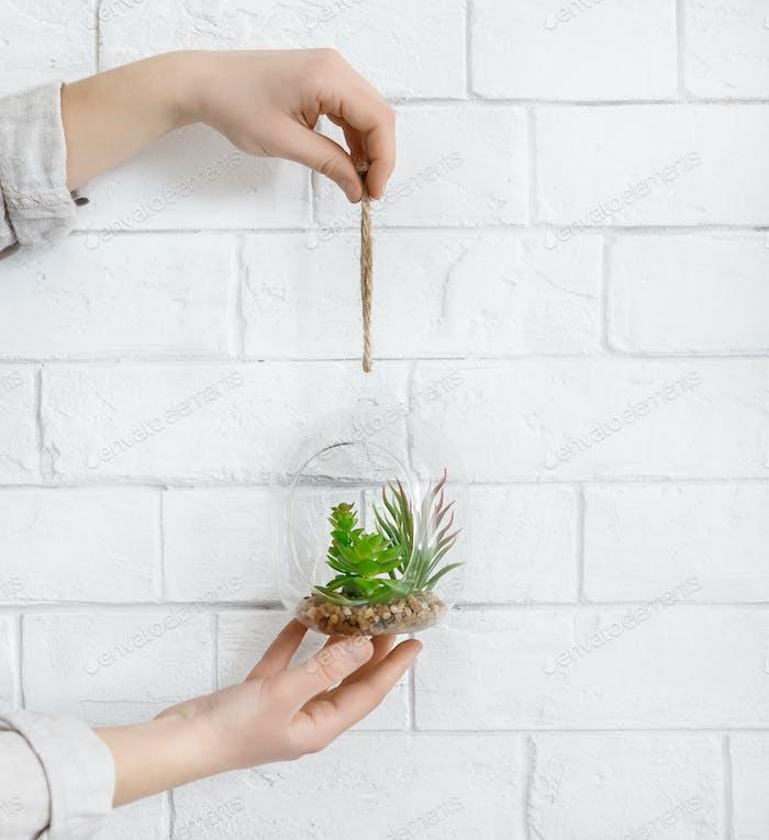 Mini glass florarium in woman's hands