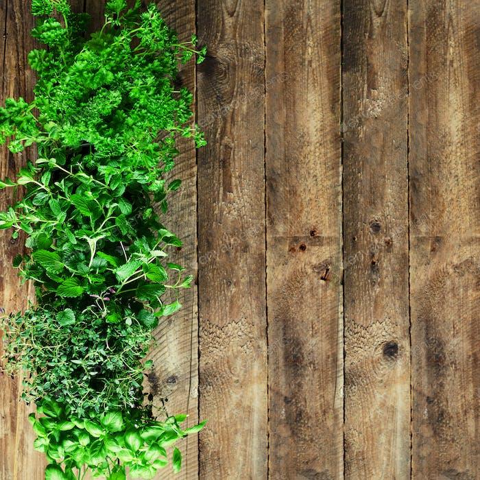 Abstraktes Frühlings- oder Sommerkonzept. Bio Kräuter (Melisse, Minze, Thymian, Basilikum, Petersilie) auf Holz
