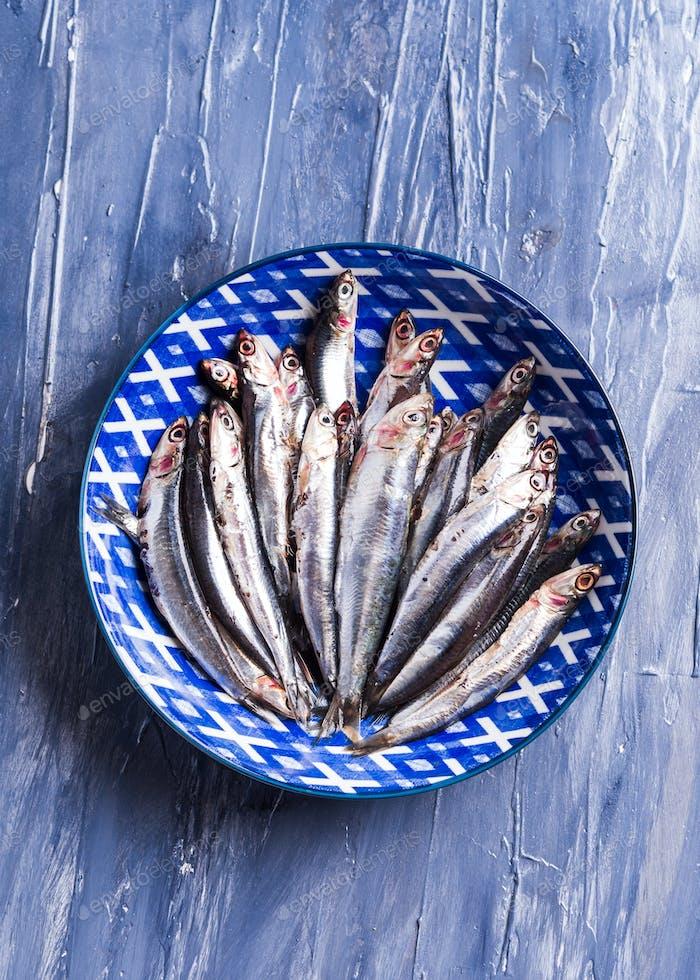 Blauer Fisch. Anchovis in einem Gericht auf Meereshintergrund