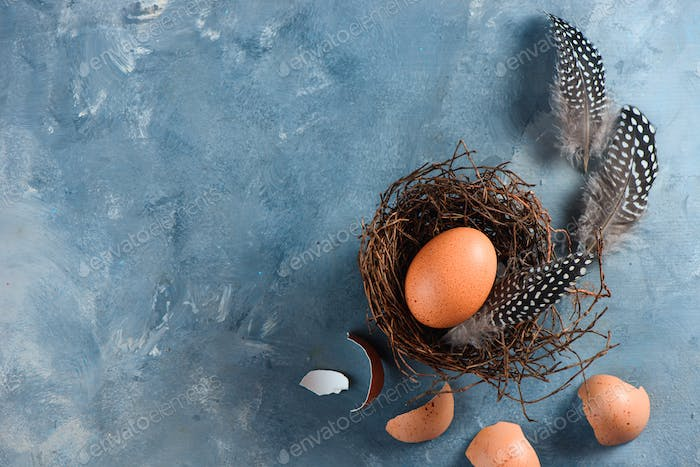Fresh chicken eggs in nest. Minimalist cooking concept with copy space.