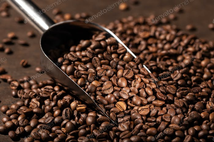 Roasted Coffee beans and scoop