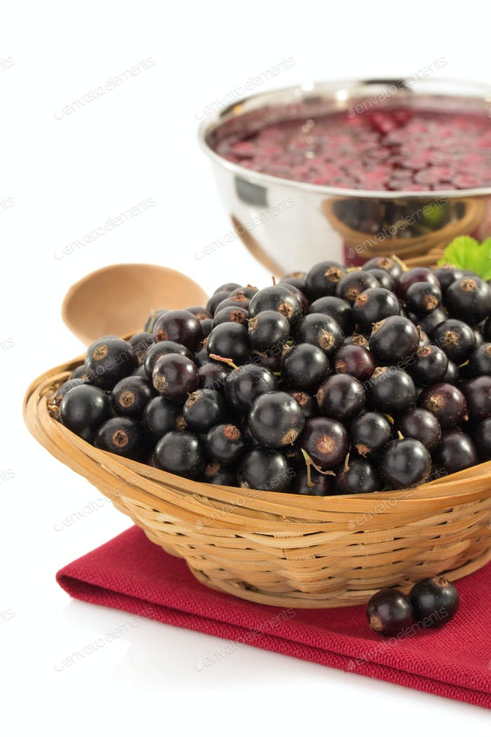 black currants on white