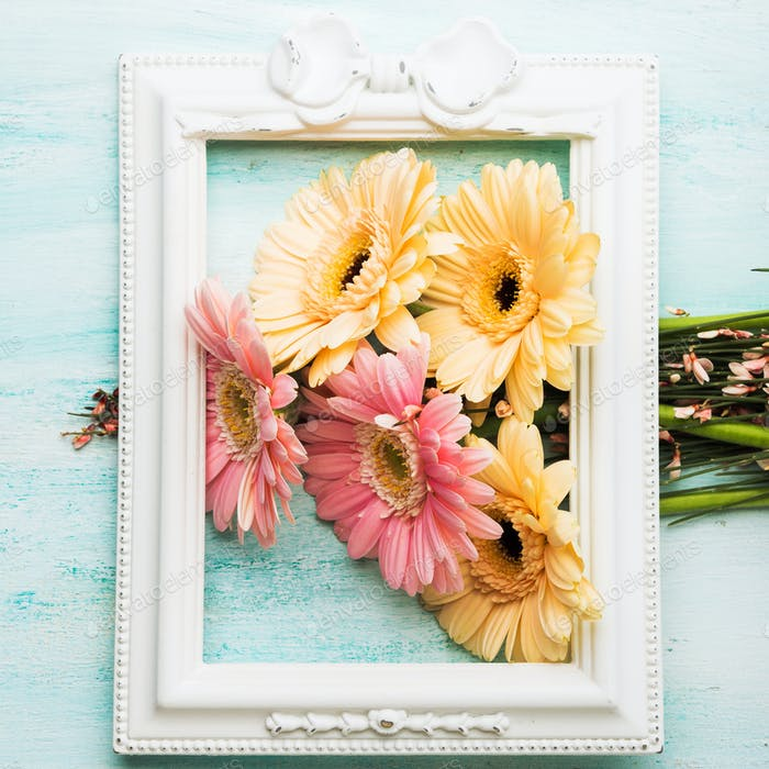 Beautiful flowers in frame on pastel green