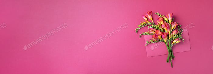Spring freesia flowers on pink background. Flat lay, top view. Spring and summer concept. Woman day