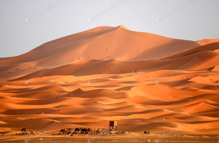 Berber homes at the foot of stunning sand dunes of Merzouga