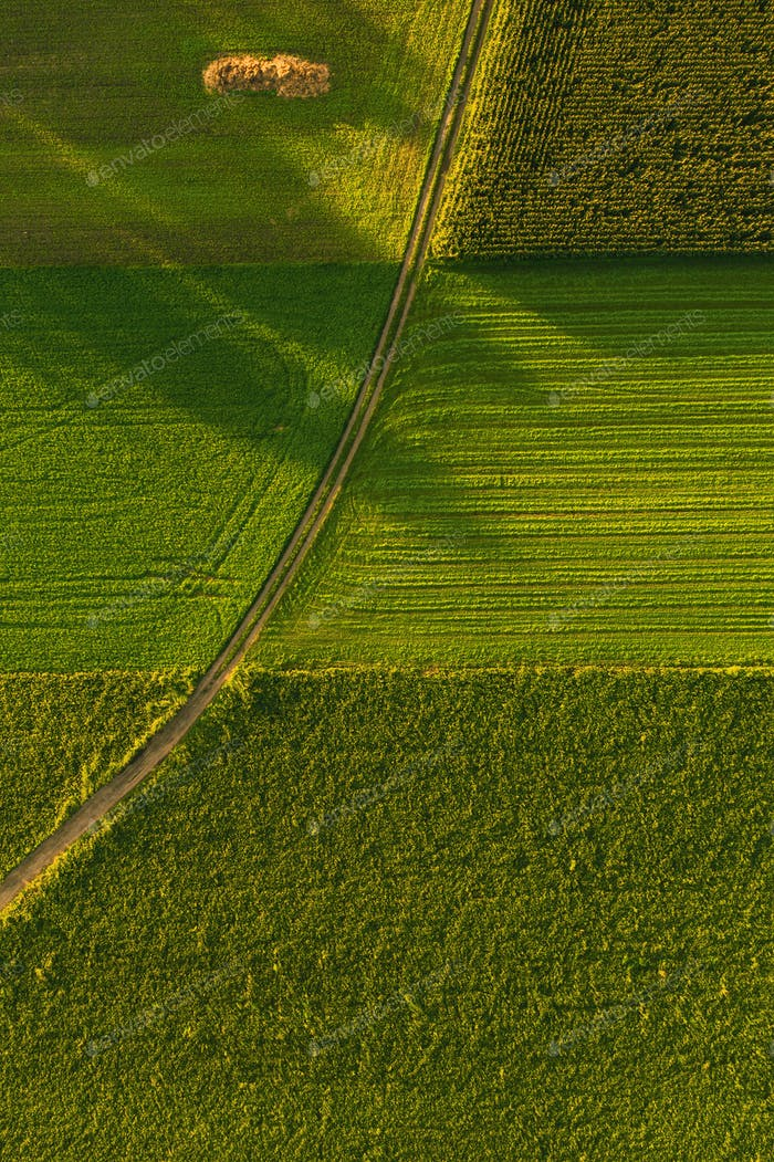 Areal view of crop fields in sunny summer day in Austria