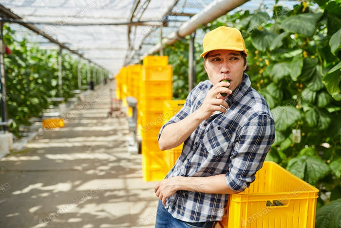 Greenhouse worker having break in hothouse
