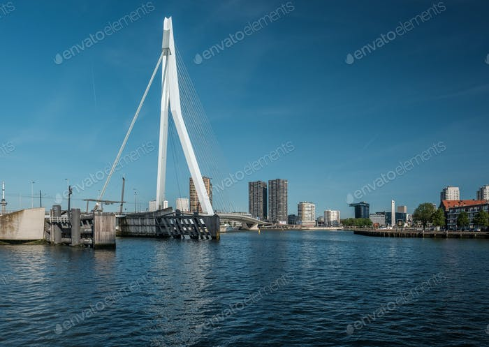 Rotterdam city cityscape with Erasmus bridge, South Holland, Netherlands.