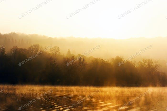 Morgen warme Sonnenstrahlen auf erstaunlichen Plitvicer Seen