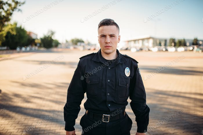 Male police officer in uniform on the road