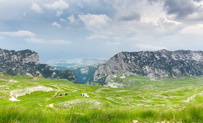 Berg-und grüne Landschaft von Montenegro