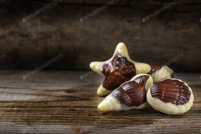seashells candy