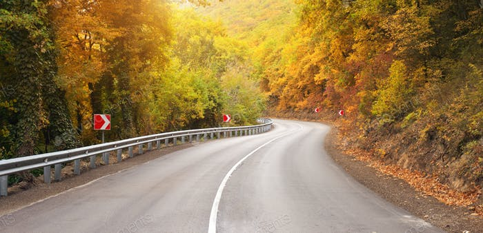 Autumn road and sunny rays.