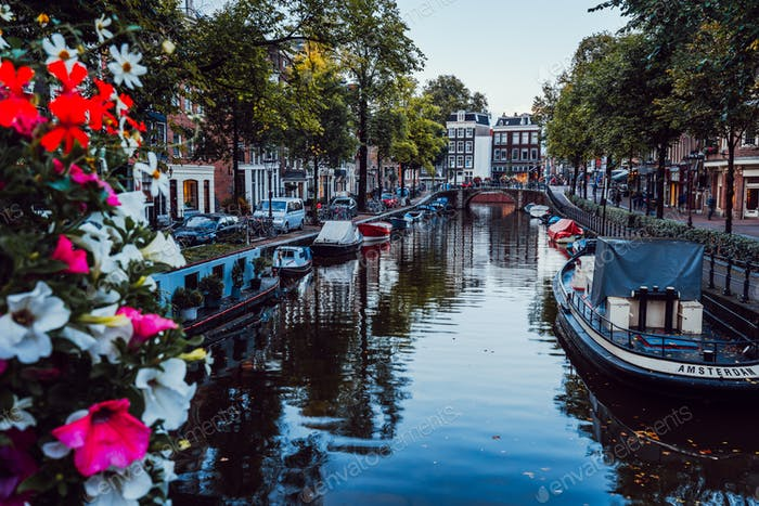 Bright flowers on a bridge over a beautiful tree-lined canal in the centre of Amsterdam, Netherlands