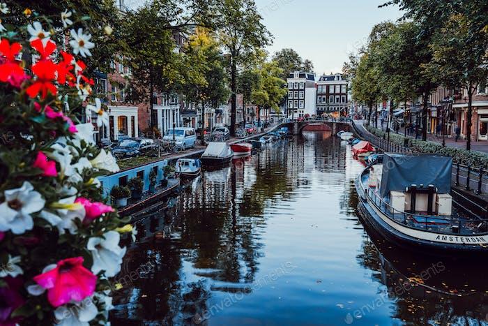 Helle Blumen auf einer Brücke über einen schönen baumgesäumten Kanal im Zentrum von Amsterdam, Niederlande