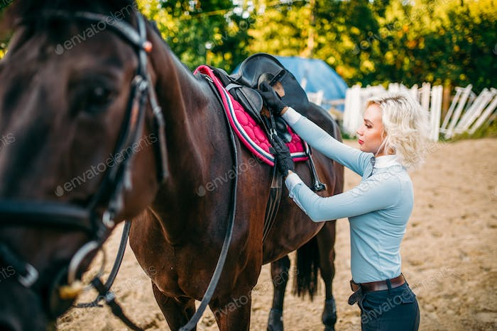 Female rider preparing a horse saddle,