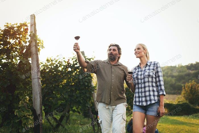 Glückliches Paar im Weinberg vor der Ernte