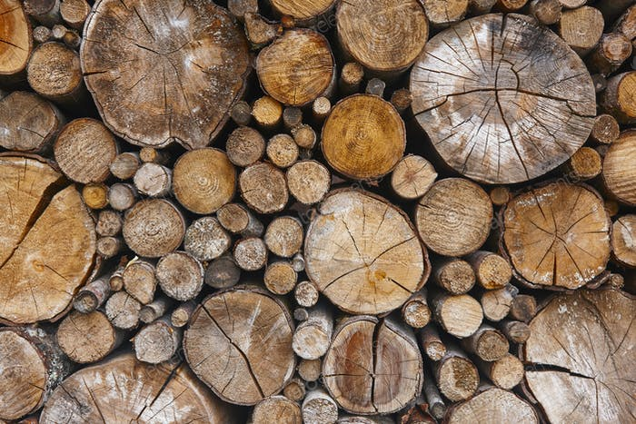 Gestapelte Baumstämme Detail. Finnland Holzindustrie. Natur Hintergrund. Horizontal