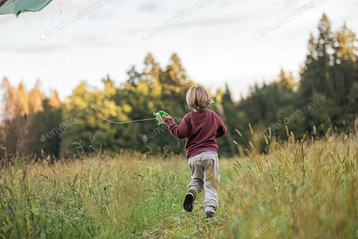 Kleiner Junge fliegen einen Drachen