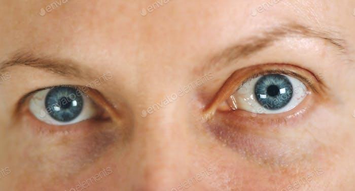 Blaue erwachsene weibliche Augen ohne Make-up