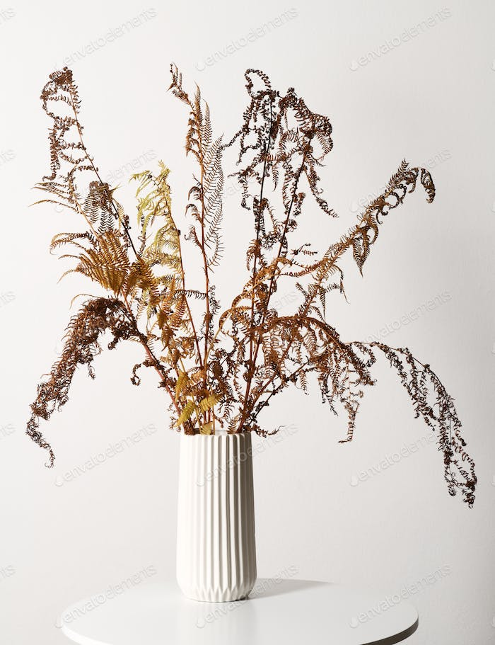 Vase with dried fern leaves