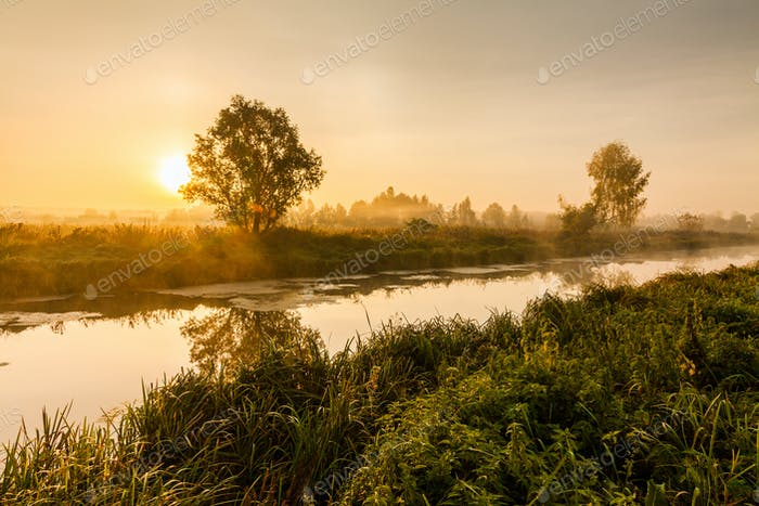 Fairytale landscape with morning fog and mysterious river