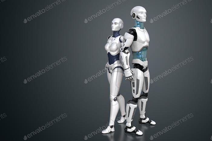 Cyber duet