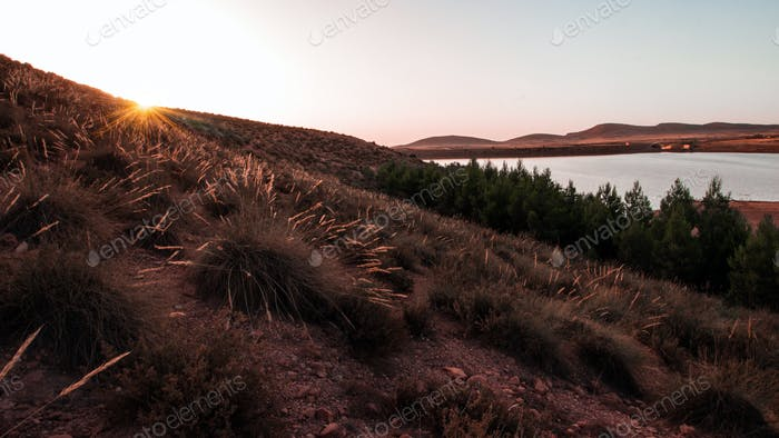 sunset  rural landscape view
