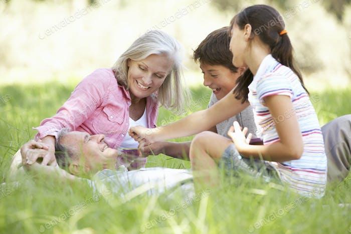 Дедушки и бабушки с внуками Расслабляющий в летнем поле